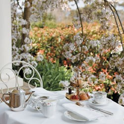 Afternoon High Tea for Two - Weekday